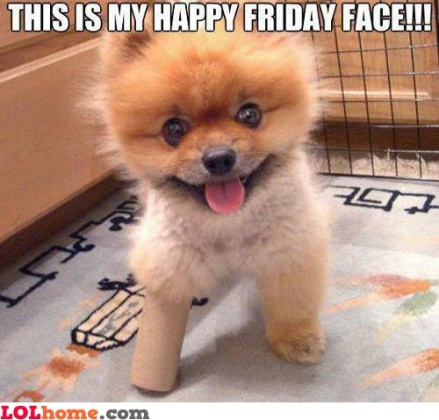 happy_friday_face-126565